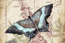 Butterfly images decoupage
