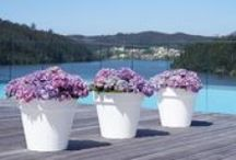 Artevasi / Add a splash of colour to your garden with an Artevasi pot. Durable and strong, Artevasi pots are the perfect way to ensure your plants and flowers have the ideal home.