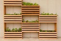 Gardening - Vertical