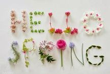 Spring / The days are getting warmer, the evenings are getting lighter, birds are singing and flowers are blooming... it's Spring!