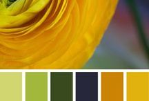 Colors for Quilts