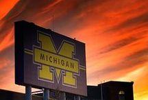 Favorite Places in Ann Arbor