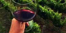 Wine Knowledge / Learn more about different wine varietals, regions, pairings - and more!