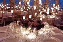 Weddings - If Money Was No Object / If you had all the money in the world....what would your wedding look like?