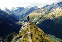 New Zealand - Dunedin / Take classes at New Zealand's most prestigious university while exploring the breathtaking forests, mountains and beaches that NZ has to offer!