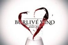Búrlivé víno / Búrlivé víno - rodinný seriál z krásneho vinárskeho prostredia - o 20:20