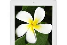 Apple iPad   Online Best Price   iCentreindia.com / iPad 2   iPad Mini   iPad With Retina Display