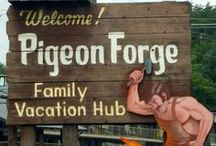 Everything Pigeon Forge