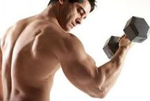 Biceps Workouts / Find the best biceps workouts and exercises. All about biceps training.