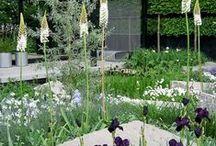 Garden - Chelsea Flower Show