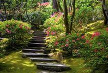 Garden - Natural & Romantic