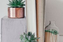 Loving Books & Librarys