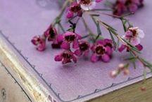 Lila, purple, violet... romantic