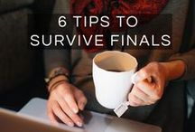 Best Studying Tips