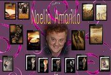 Novelas de Noelia Amarillo / Las portadas de mis libros