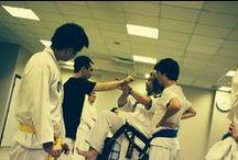 Taekwondo & Co / An array of photos from Taekwondo