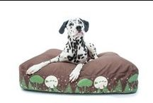 Winter Collection Dog Bed / Téli kollekció a PetBag kutyafekhelynél a megszokott kényelemmel és minőségben.
