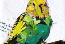 Birds  / Beautiful birds