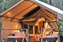 { camping }