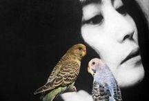 Music I Love / Best Music / by Gigi Oki