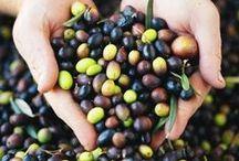 Love for Olives