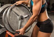 Training / Some good training tips.,