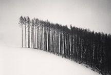 Stagioni_Inverno