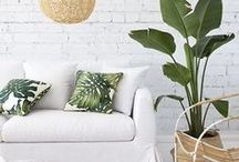 Interiors -and some outdoors / coast style interiors, beach style interiors, minimalism, white interiors, modern bohemian, tropical style, terraces, decorating with plants, colonial style, key west decor, florida decor, scandinavian interiors