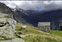 Alpine architetture