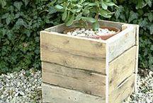 Blumenkübel, Pflanztöpfe und Co / Behältnisse für Pflanzen