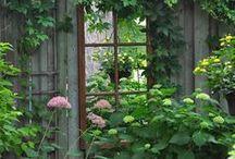 Gartenideen / Viel schönes für den Garten