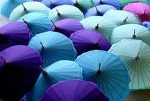 ++ Umbrellas ++