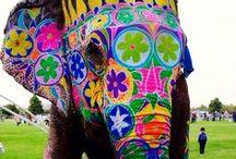ELEFANTINHOS / elefantes