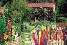|| gardening ||