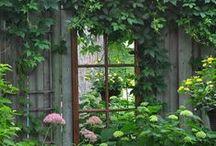 Gartenlaube / Lauschige Plätzchen im Garten