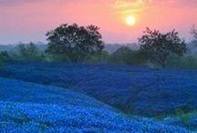 Nature Raw & Beautiful