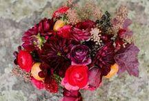 Fall Weddings / fall wedding ideas and inspiration