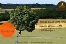 Team Runners | The Tree / The Running Tree