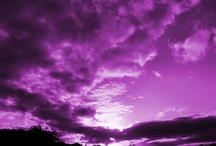 Purple Heaven - I bleed Purple / by LaVada Tillie