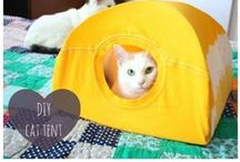 diy for your cats