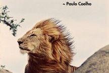 Paulo Coelho words