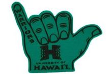 University of Hawaii / Home of the Warriors