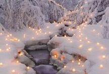 Winter beauty / snow, frost,