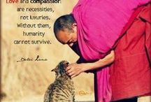 Humanity / Human &  animal rights