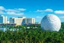 Orlando #FoxRoadtrip / If you're traveling to Orlando, Florida, visit our board for ideas on places to visit and other resources to make your trip planning easier! Feel free to add your own recommendations, too.  / by Fox Rent A Car
