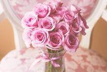 Růžová nálada / Delicate pink