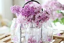 Flowers / Dites le avec des fleurs ...