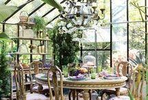 Jardins d'hiver / Un petit coin de paradis pour les jours d'hiver et de pluie....