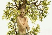 Arbre de vie - tree of life / Une autre façon de voir les arbres