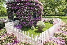 garden of my dreams